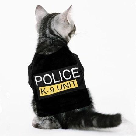 accesorios gato camiseta