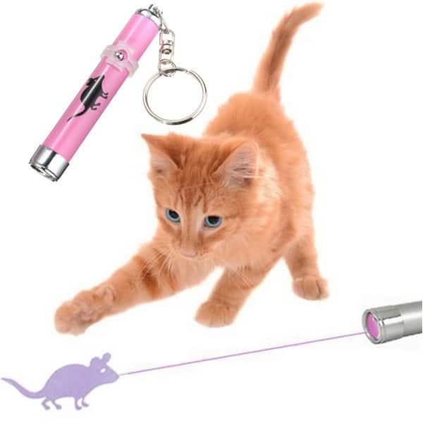 accesorios gato laser raton