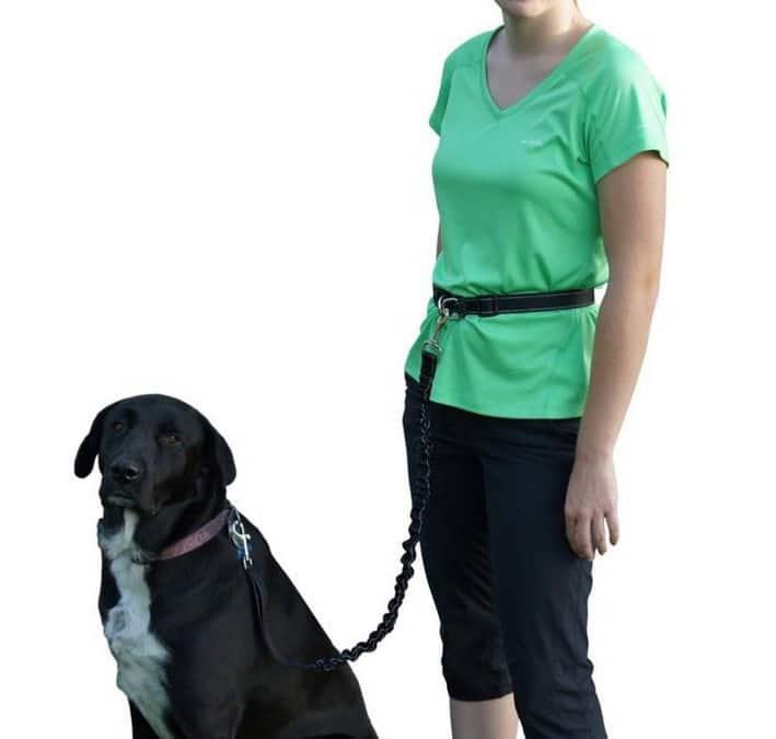 accesorios perro correa deportiva