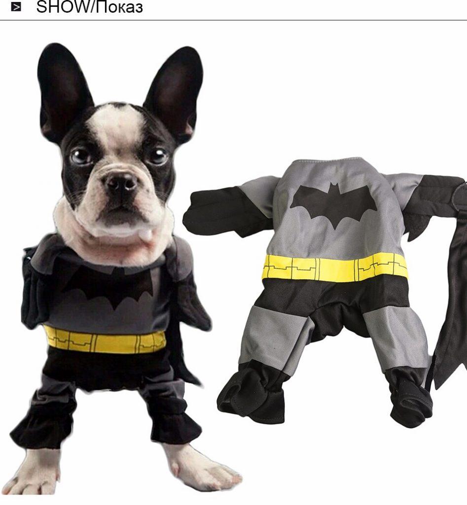 accesorios perro disfraz