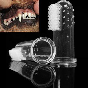 cepillo dientes perro