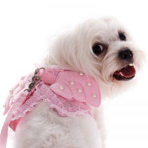 disfraz-angel-perro-aliexpress