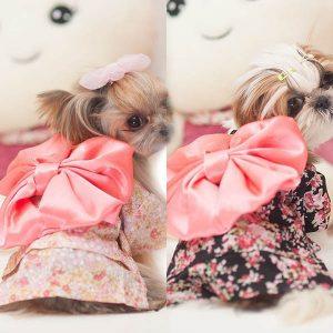 disfraz-kimono-perro-aliexpress