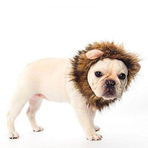 disfraz-leon-perro-aliexpress