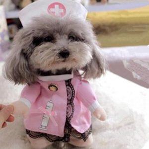 disfraz-perro-enfermera-aliexpress
