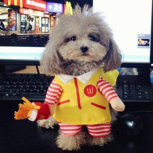 disfraz-perro-mcdonalds-aliexpress
