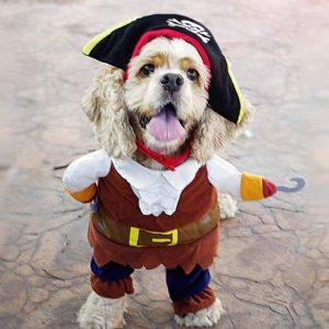 disfraz-pirata-aliexpress