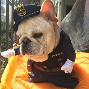 disfraz-policia-perro-barato-aliexpress