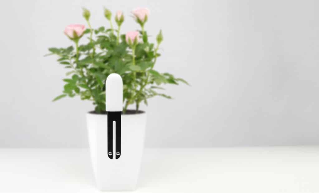 sensor Xiaomi para plantas buen precio y calidad