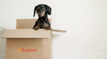 AliExpress Standard Shipping vs AliExpress Saver Shipping: ¿qué diferencias hay entre estos dos envíos?